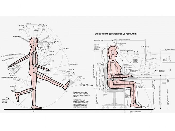 Quieres saber qu es la ergonom a en el trabajo for Antropometria de la vivienda
