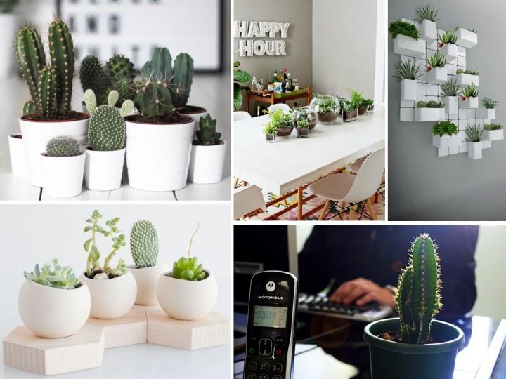 La mejor decoraci n de oficinas con plantas for Decoracion oficinas y despachos