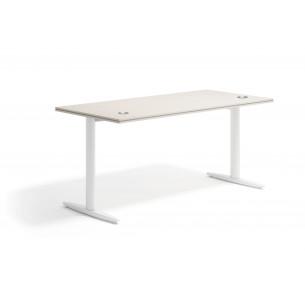 Work due mesa blanco