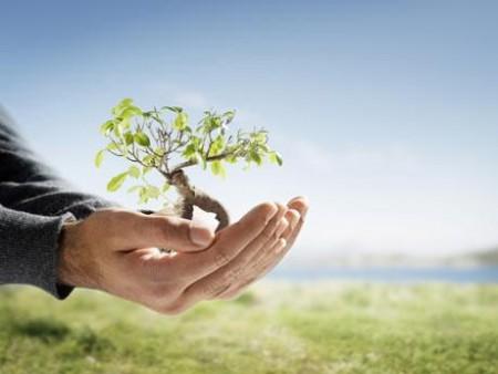 La construcción sostenible cuida el medio ambiente