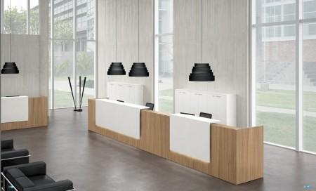 Muebles y decoración minimalista en el trabajo