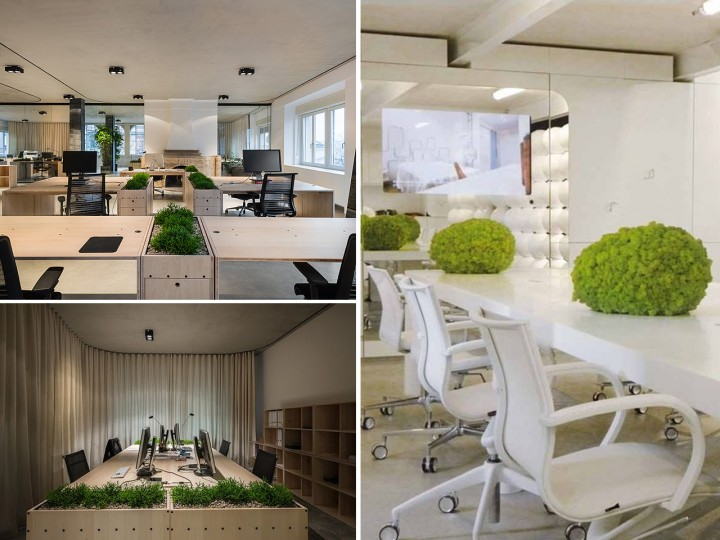 La mejor decoraci n de oficinas con plantas for Piedras naturales para decoracion interiores