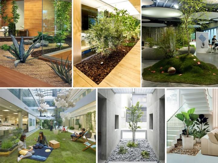la mejor decoraci n de oficinas con plantas
