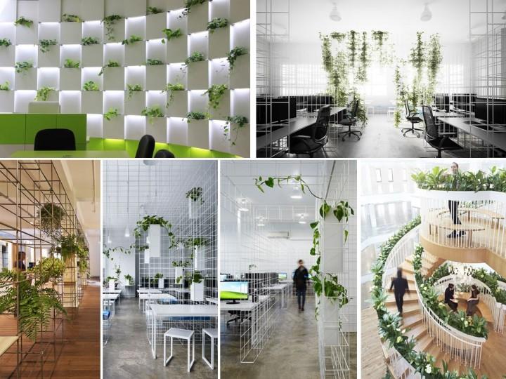 plantas en las oficinas