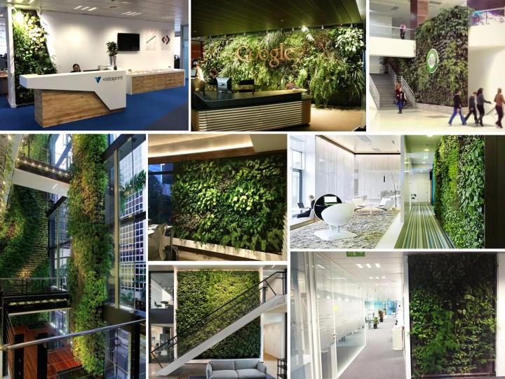 jardines verticales en oficinas