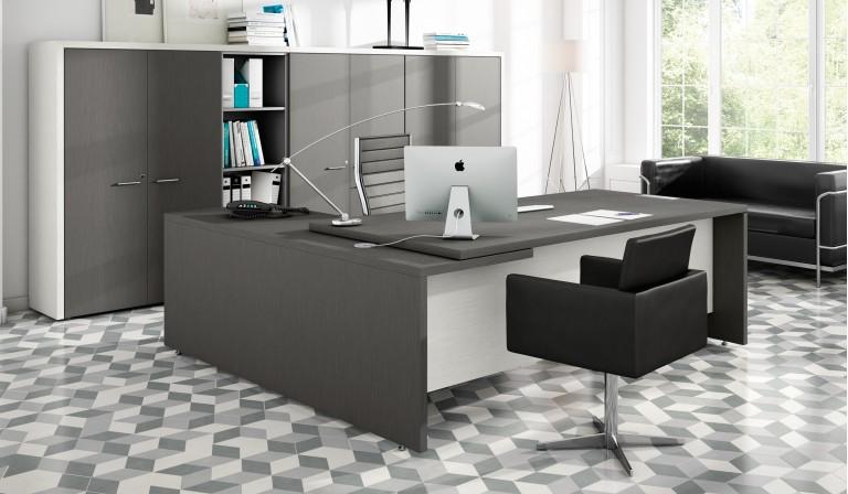 Dise o de oficina c mo distribuir el espacio y decorarlo for Diseno de oficinas pdf